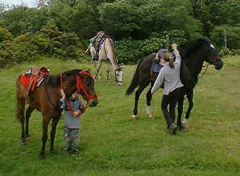 horses and children in Monteverde Costa Rica